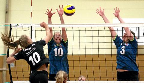 volleyball spielen dresden